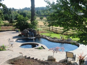 Beautiful pool and spa in custom landscape
